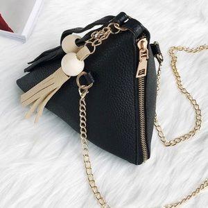 Evolving Always Bags - Adorable Mini Bag Great Conversation Item